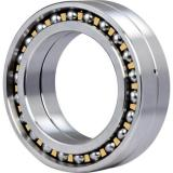 1020A Original famous brands Bower Cylindrical Roller Bearings