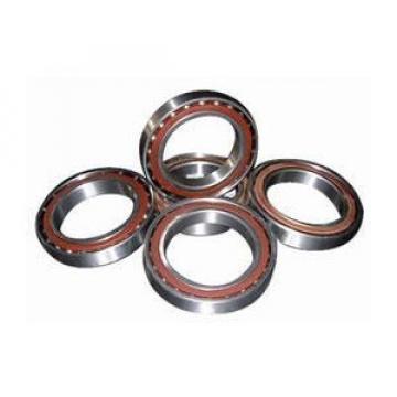 1008VA Original famous brands Bower Cylindrical Roller Bearings