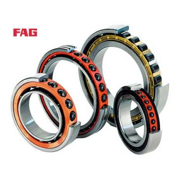1244X Original famous brands Bower Cylindrical Roller Bearings