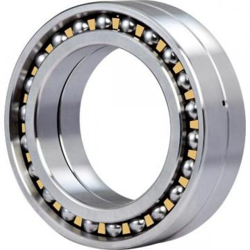 1006LA Original famous brands Bower Cylindrical Roller Bearings